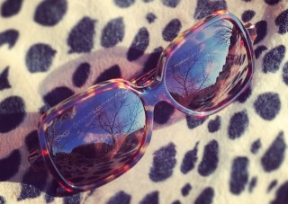glam chic sunglasses