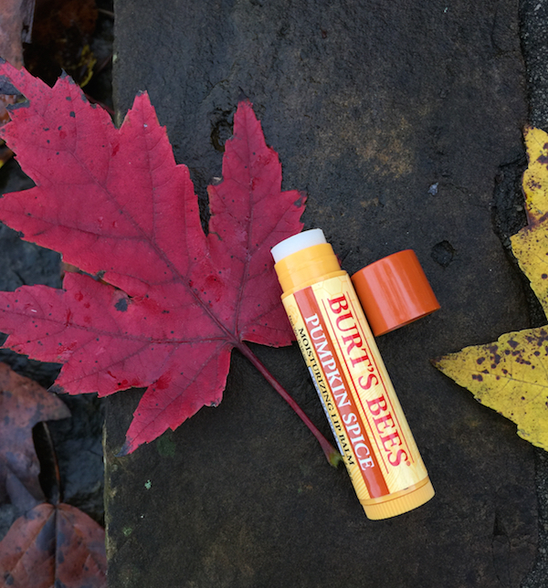 burts bees lip balm review