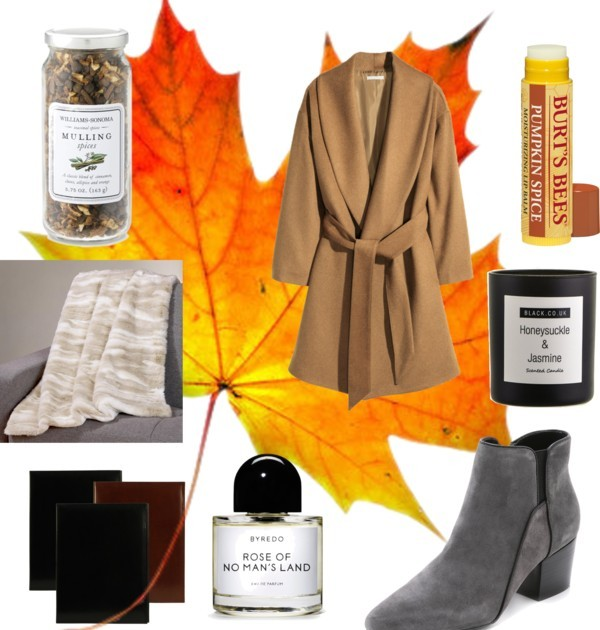 My Cozy Autumn Essentials