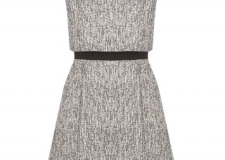 stylish tweed dress