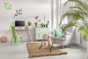 home office decor examples
